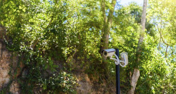 نصب دوربین مداربسته گلخانه